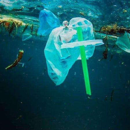 Balneário Camboriú aprova projeto de lei que proíbe canudos plásticos